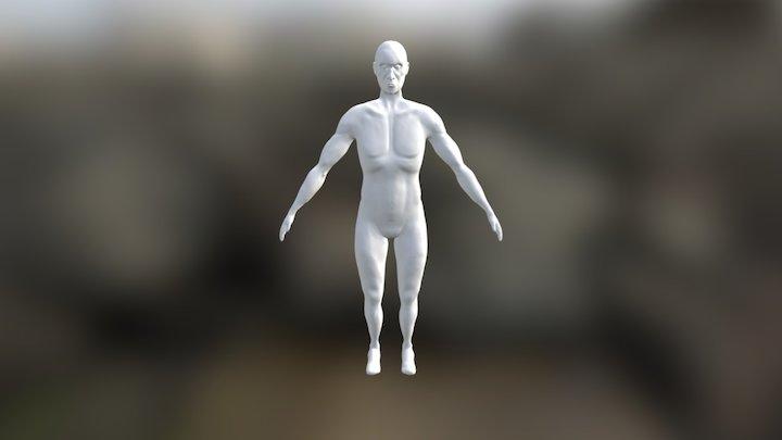 Anatomy Study - Eustácio 3D Model