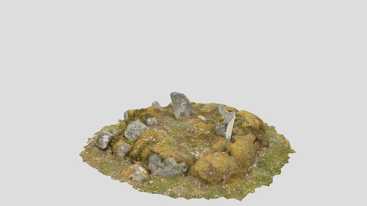 Gränsröse 3D Model