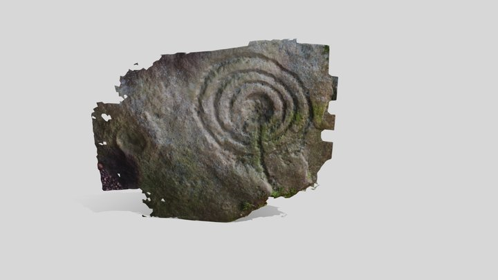 Binn - Neolithic Rock Art - Fife, Scotland 3D Model