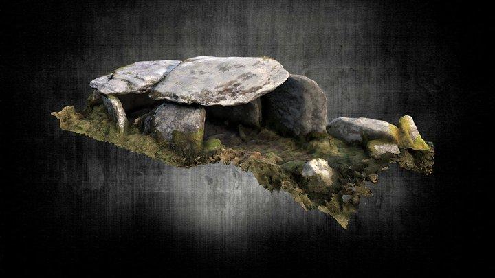 Caherlehillan Wedge Tomb 1 3D Model