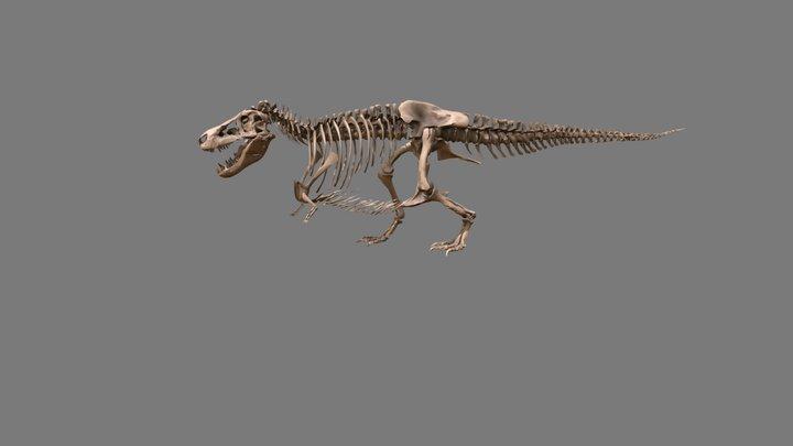 SUE the T. rex - Virtual Tour 3D Model