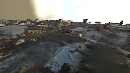 Fiddleheads Simplified 3d Mesh 3D Model