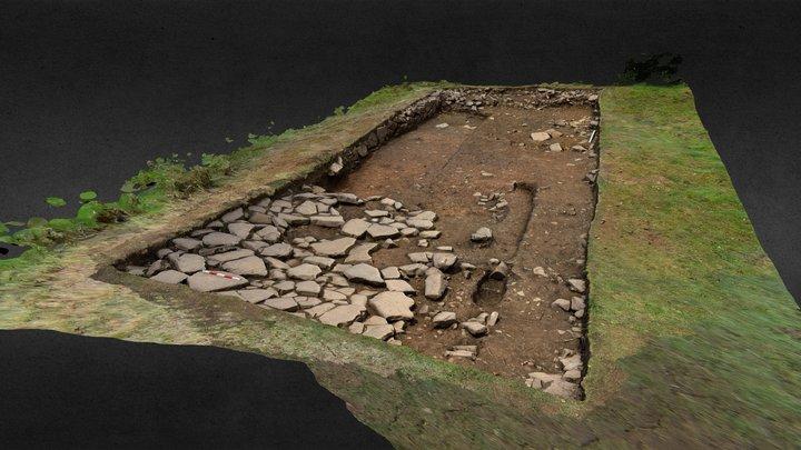SWAAG HFS19 Excavation Area 3 3D Model