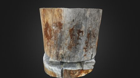 log test 3D Model