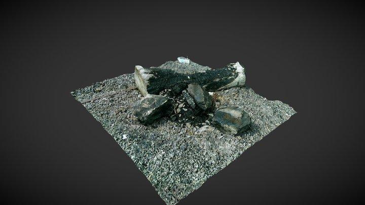 Burnt log 3D Model