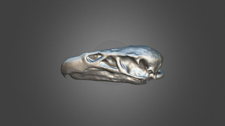 California Condor Pendant 3D Model