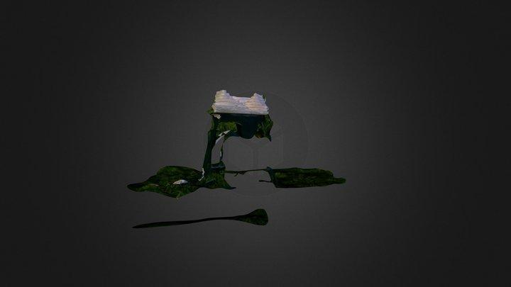 Capture_2013_09_19_16_37_25-mesh 3D Model