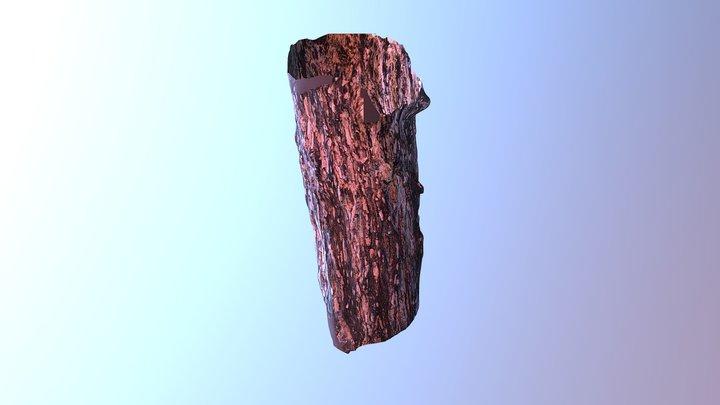 Sappy Tree Scan 3D Model