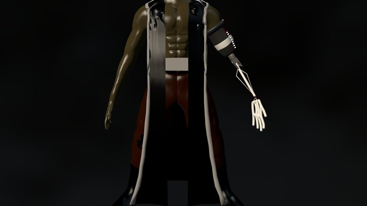 PoseProject_with_Robe.blend 3D Model