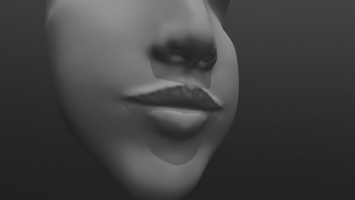 mouth and nose sculptjanuary18 day 1 3D Model