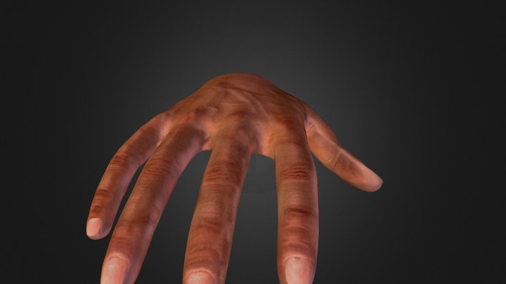 Game-Ready Hand 3D Model
