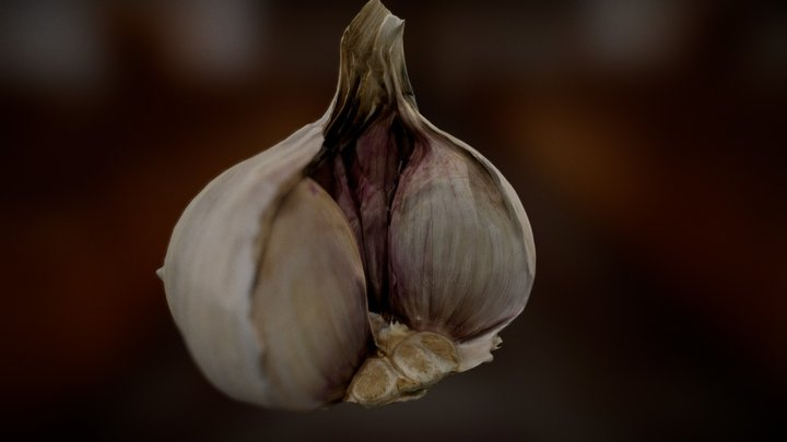 Garlick 2 - optimised 3D Model