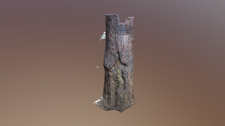 Picture Tree 3D Model