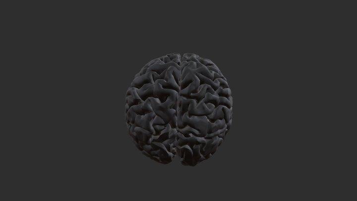 brain_test 3D Model