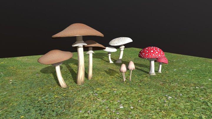 Mushrooms Set 01 3D Model