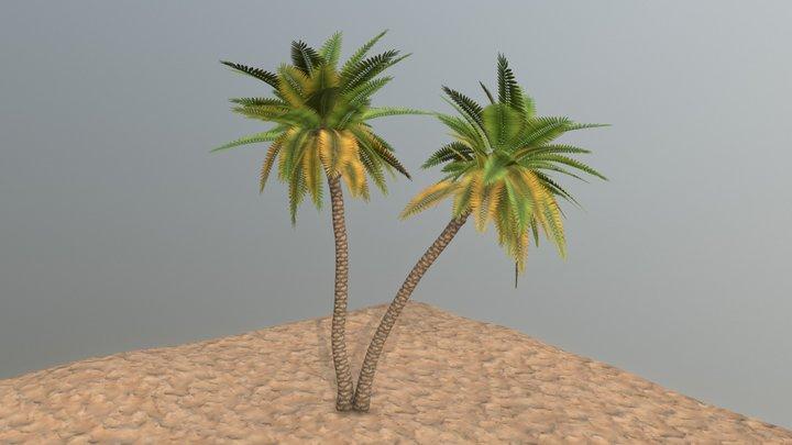 PalmTree 3D Model