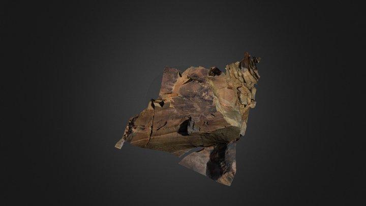 Leopardenplatte 3D Model