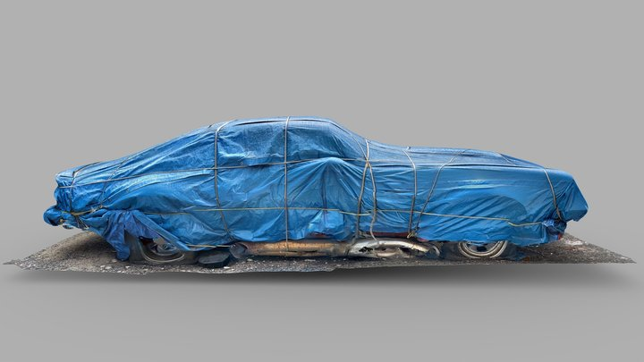 Day 50: Car Bondage 3D Model