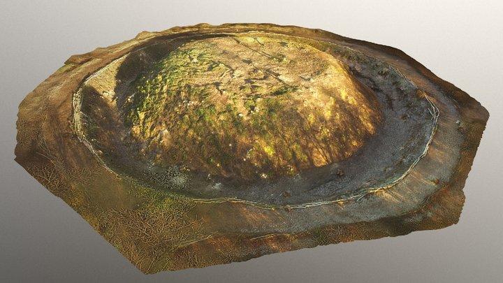 Mount Stewart Motte, Co. Down 3D Model