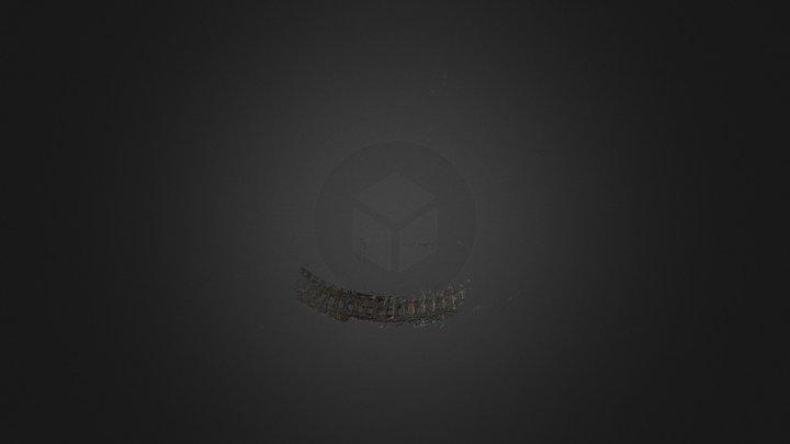 Dense 3D reconstruction of the Colosseum 3D Model