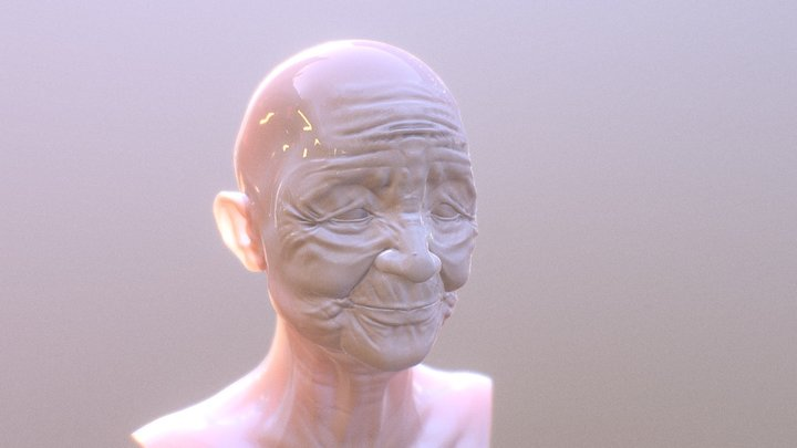 Face of Experience 3D Model