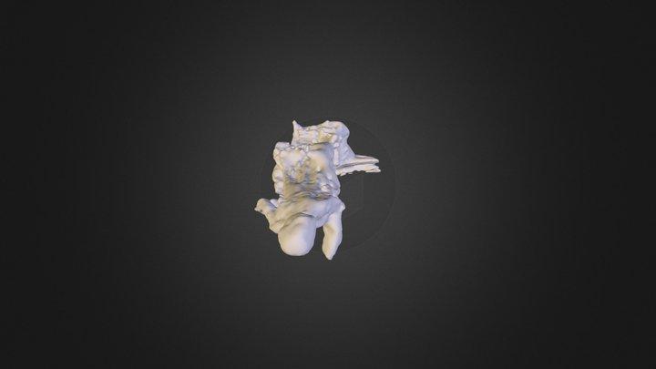 san giacomo statua 1 mesh VSFM+PMVS+MESHLAB 3D Model