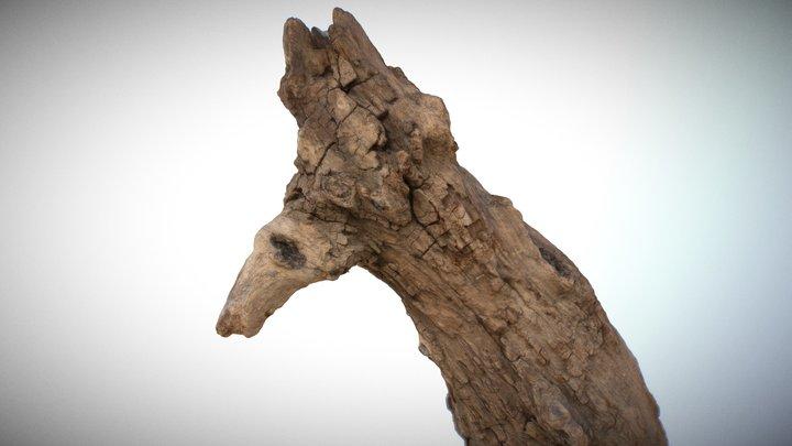 RAW 3D Photoscan - Bird Wood Log 3D Model