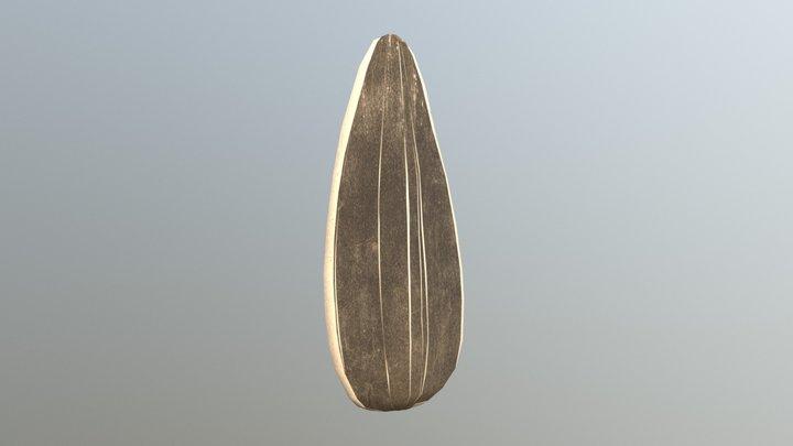 Sunflower Seed 3D Model