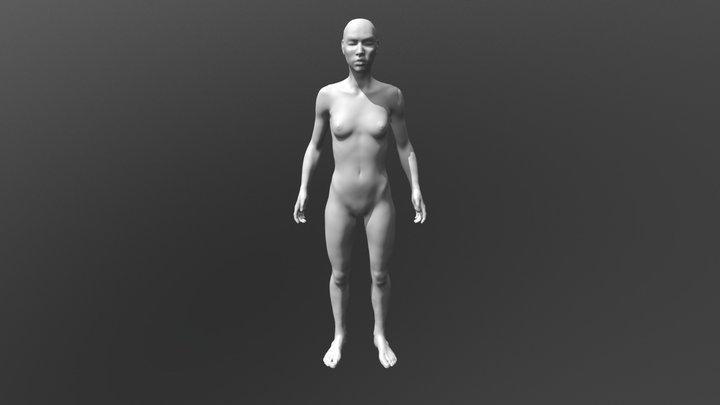 hm 3D Model