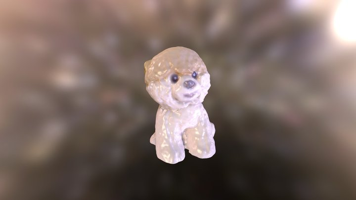 Boo: The World's Cutest Dog 3D Model