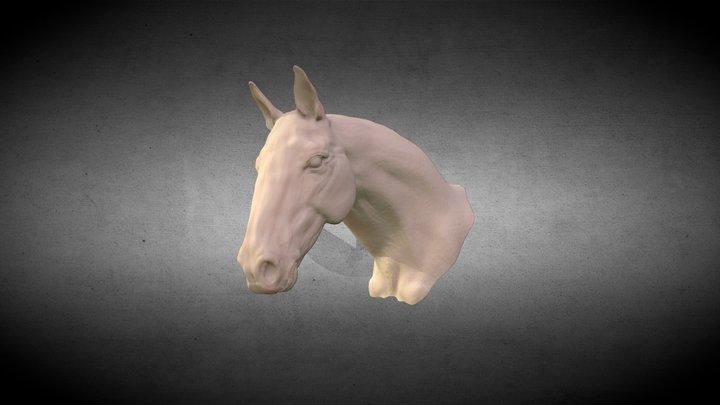 Horse Head sculpt 3D Model