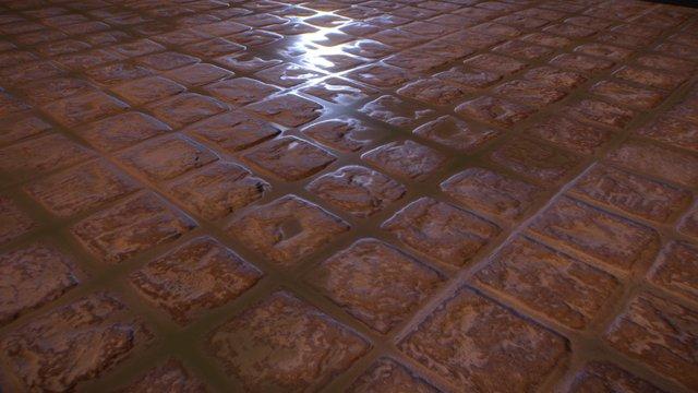Rough Terracotta Tiles 3D Model