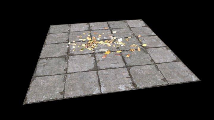 Lá cây trên mặt đất 3D Model