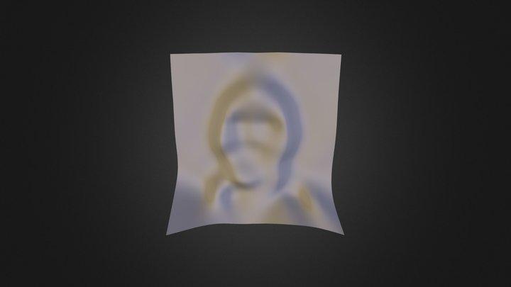 Facial Topography 3D Model