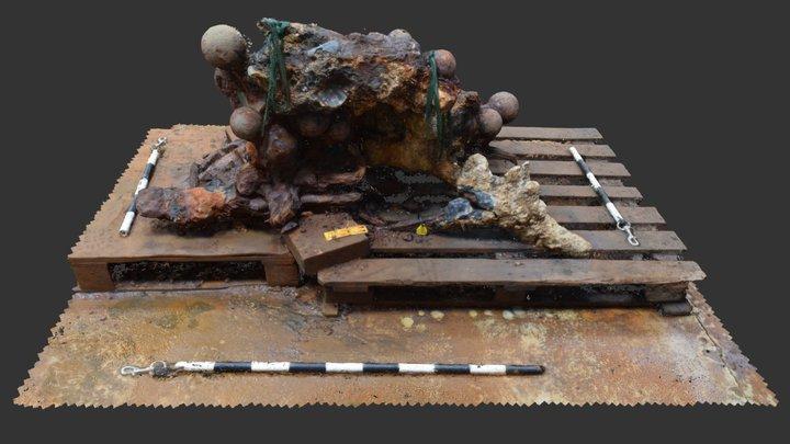 RK17 F00001 Concretion Stage 10 3D Model