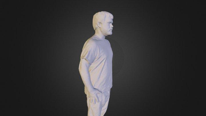 Kinect 3d Scan 3D Model