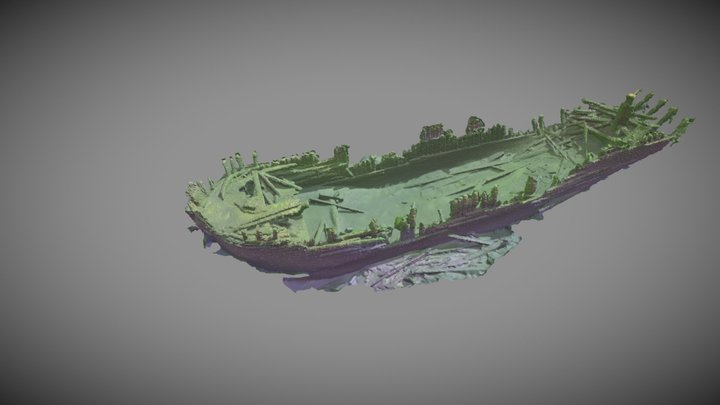 The wreck of Alfred 3D Model
