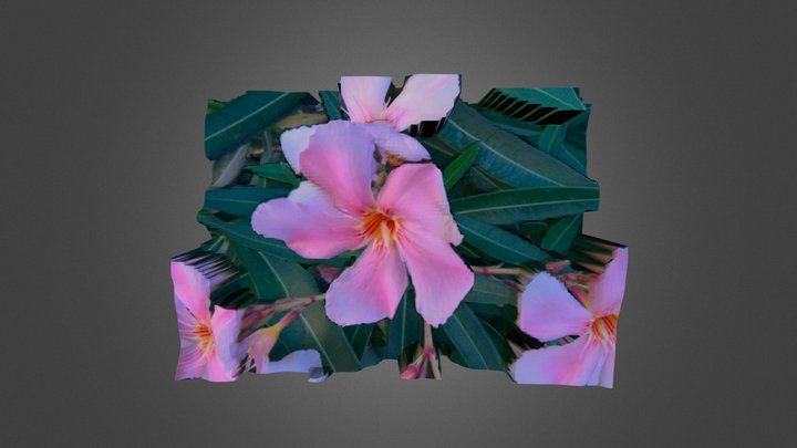 3D-Pictures manually 3D Model