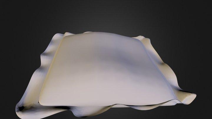 Pillow N081111.3DS 3D Model