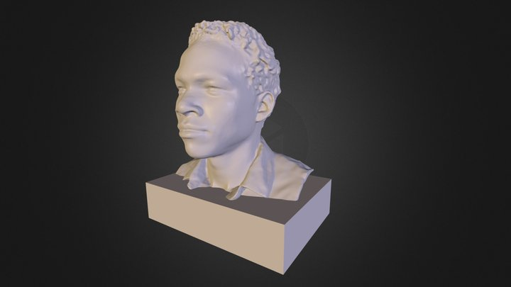 Scan using 4eyes, Structure Sensor and Skanect 3D Model