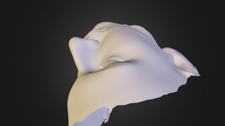 Face-3 3D Model