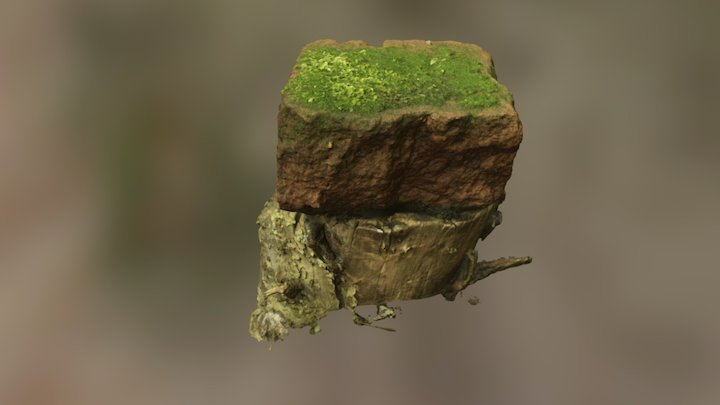 Brick with Moss 3D Model