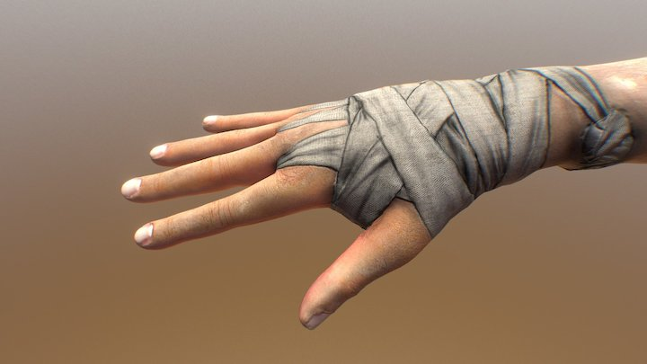 Hand and bandage 3D Model