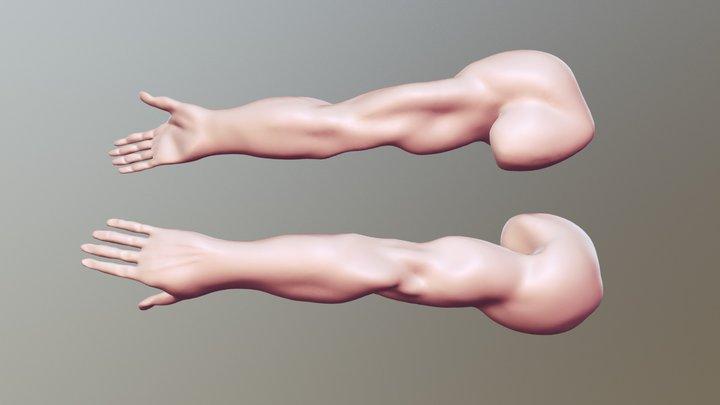 #SculptJanuary18 - Day 15: Limb 3D Model