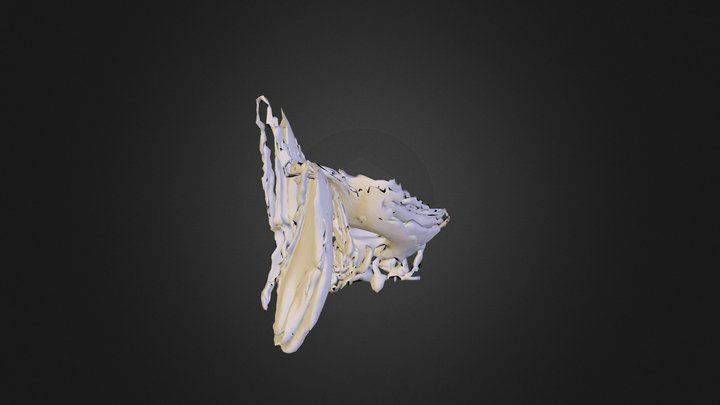 yourMesh 3D Model