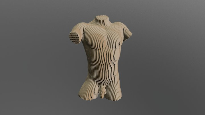 Male Torso 3 21 58 3D Model