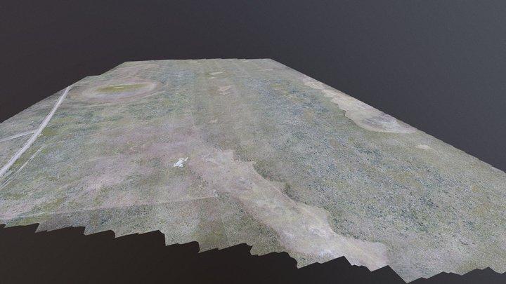 Modelo Ribbed 3D Model