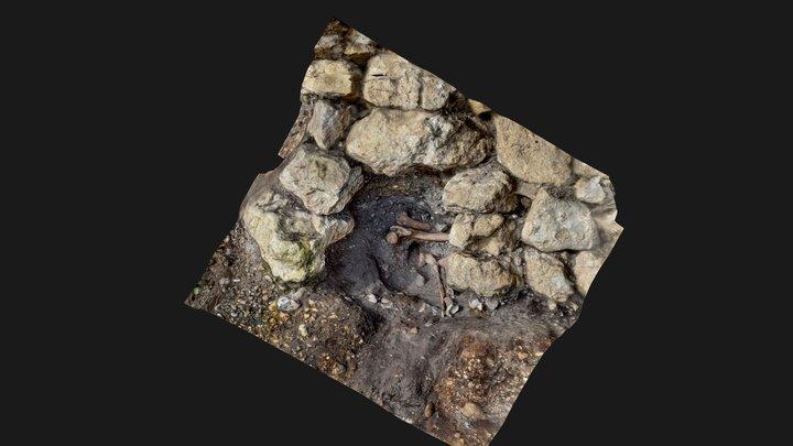 BURROW [RAT] ISLAND GRAVE CUT 3D Model