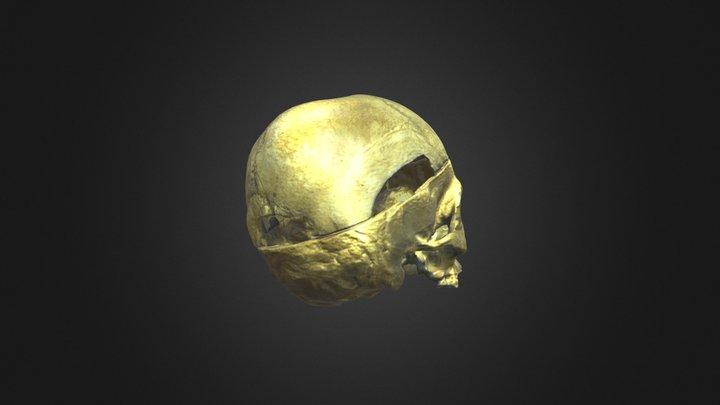 Teschio 0 3D Model