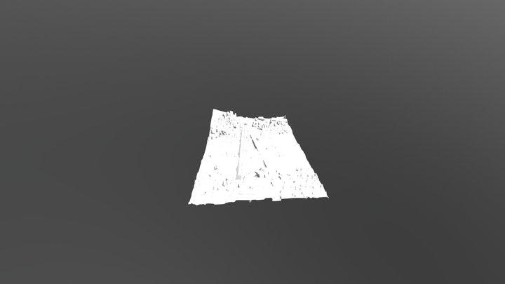 Punete y topo V12 3D Model